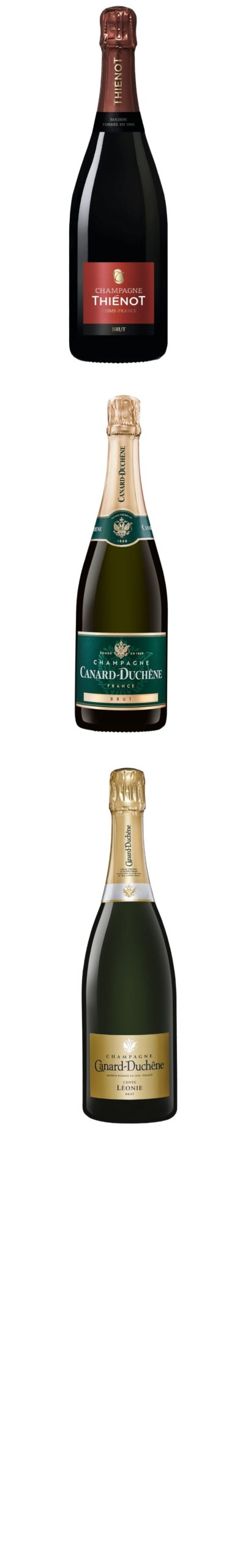 Animation bouteilles verticales Champagnes Export (2)
